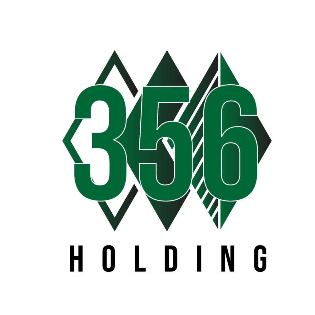 356 HOLDINGS 1